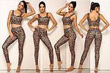 Спортивний жіночий костюм для фітнесу бігу йоги. Спортивні жіночі легінси топ для фітнесу (леопардовий), фото 2