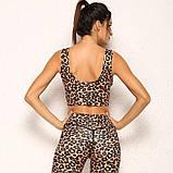 Спортивний жіночий костюм для фітнесу бігу йоги. Спортивні жіночі легінси топ для фітнесу (леопардовий), фото 6