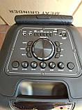 Колонка акумуляторна Ailiang UF-2112 c радіомікрофонами (100W/USB/BT/FM), фото 2