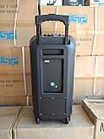 Колонка аккумуляторная Ailiang UF-2112 c радиомикрофонами (100W/USB/BT/FM), фото 4