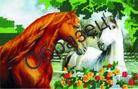 """Схема для частичной вышивки """"Пара лошадей"""""""