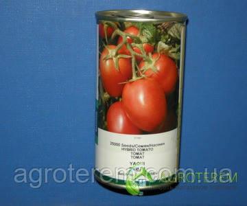 Семена томата Яки F1 (Yaqui F1)  25000с