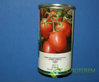 Семена томата Яки F1 (Yaqui F1)  25000с, фото 1