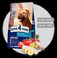 Клуб 4 Лапы Премиум класса  2 кг для собак гипоаллергенный с ягненком и рисом