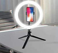 Светодиодное кольцо (кольцевая лампа) 20 см PULUZ с шаровой головкой (черный)