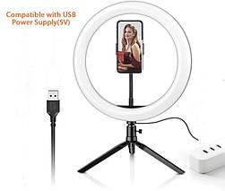 Кольцевая лампа для блогеров 30 см. диаметр PULUZ с мини-штативом, фото 2