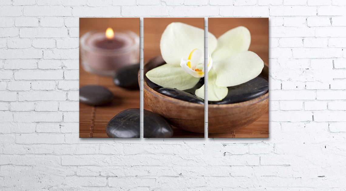 Модульная картина на холсте 3 в 1 Белая орхидея 60х90 см