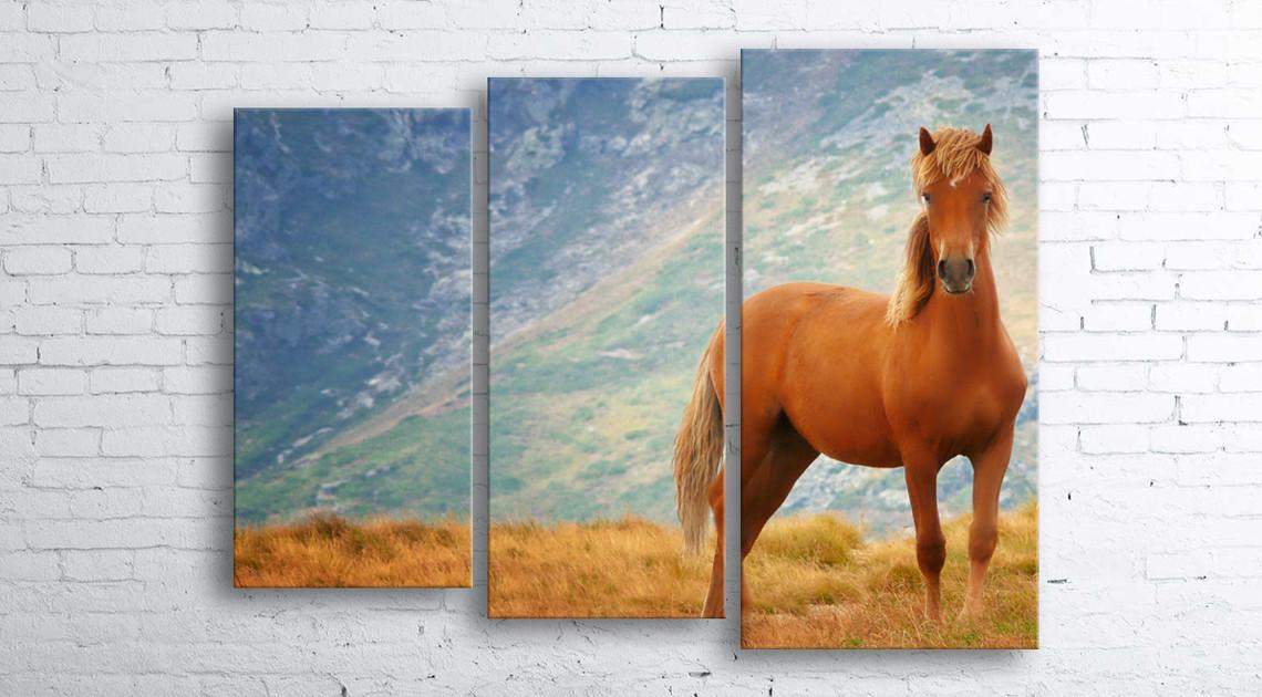 Модульная картина на холсте 3 в 1 Рыжий конь 100х130 см (секции разного размера)
