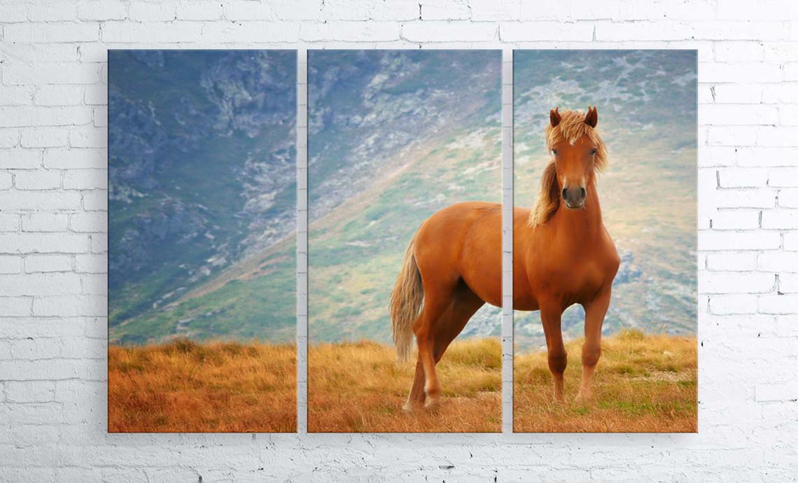 Модульная картина на холсте 3 в 1 Рыжий конь 100х150 см