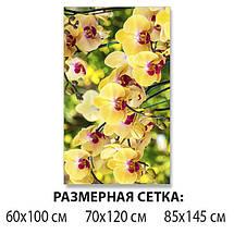Наклейка на стол Желтые пышные Орхидеи, самоклеющаяся пленка с фотопечатью, цветы, желтый 60 х 100 см, фото 2