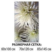Наклейка на стол Белые хризантемы, виниловые интерьерные наклейки для мебели, цветы, белый, 60 х 100 см, фото 2