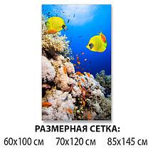 Виниловая наклейка на стол Желты рыбы и Кораллы декоративная пленка с ламинацией аквариум, синий 60 х 100 см, фото 2