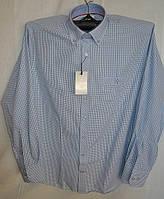 Приталенная голубая сорочка Carlo Puccini (Турция), фото 1