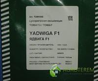 Семена томатов Ядвига F1 100с