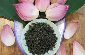 Вьетнамский зеленый чай с лотосом 100 г Che Hoa Sen (Hoang Long Tea) 100g, фото 2