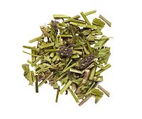 Буквица лекарственная, трава 100 грамм - (Betonica officinalis)