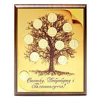 Денежное дерево с позолоченными гривнами 22х30 ДУ-А4-З, фото 1