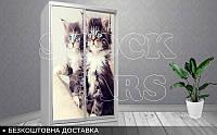 Шкаф - купе Котята, фото 1
