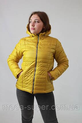 Женская весенняя куртка из плащевки на синтепоне рр 42-74, фото 2