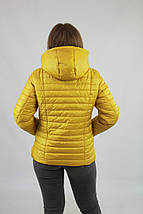 Женская весенняя куртка из плащевки на синтепоне рр 42-74, фото 3
