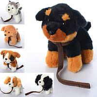 М'яка іграшка SD5469 собачка