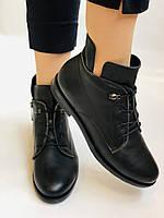 Alpino. Жіночі осінні черевики. На низькому каблуці. Натуральна шкіра.Alpino. Р. 37 -38 .Vellena, фото 5