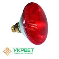 Инфракрасная лампа для обогрева птиц PAR38, 100 Вт, Е27