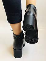 Женские осенние ботинки. На среднем каблуке. Натуральная кожа.Турция.Высокое качество.Dalmax Р. 36 38.40, фото 6