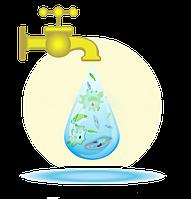 Расширенный химический анализ воды на 23 показателя