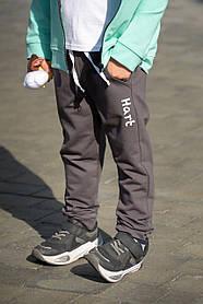 Штаны детские спортивные для мальчика (110, 122,) ТМ Hart