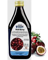 """Сироп """"Красная Ягода"""" / Red Berry, мультивитаминный напиток"""