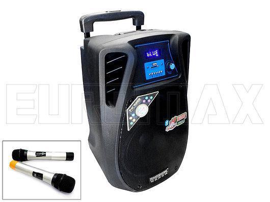Комбоусилитель Temeisheng SL10-02 c аккумулятором переносная
