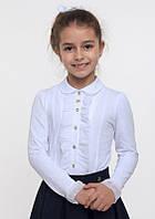 Блуза школьная для девочки (114513), Smil (Смил) 122 (7 лет) р. Темно-синий/Молочный