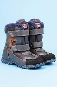 Ботинки детские зимние серые Calorie 123070P