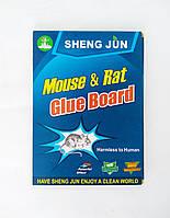 Клеевая ловушка книжка SHENG YUN от грызунов 17*24 см малая