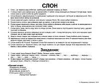 Карточки Домана Подарочный набор Вундеркинд с пеленок Большой чемодан Ламинация Украинский язык 21 набор, фото 4