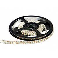 Белая cветодиодная лента Slim SMD 3528 (120 LED/m) IP20 Premium 6000k