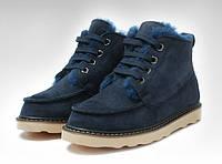 Зимние мужские ботинки Ugg Australia David Bakham (угги девид бекхем) синие, фото 1