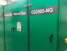 (Мини-ТЭЦ) PowerLink CG300-NG, фото 2