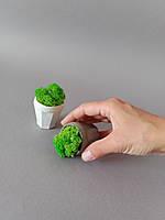 "Кашпо ""mini грани"" д-4см маленький вазон горшочек для суккулента растений мха корпоративный подарок"