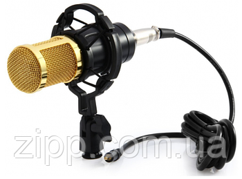 Студійний мікрофон MHZ M-800   Мікрофон для запису