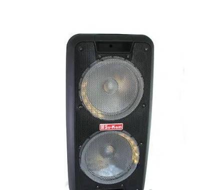 Портативная колонка  Su-Kam 1010 2 микрофонаc BT  12v\220v