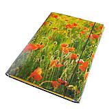 Папка-короб на резинке, А4, 25 мм, полноцветная, PP-покрытие, фото 5