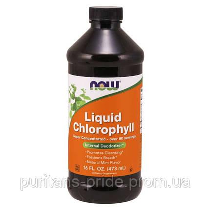 Хлорофилл NOW Liquid Chlorophyll (473 мл), фото 2