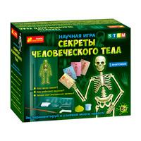 0398 Анатомия.Скелет человека 12115017Р