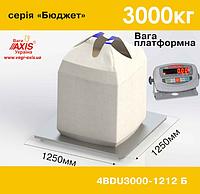 Весы платформенные складские 4BDU3000-1212-Б