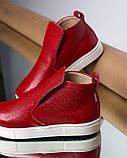 Женские зимние красные ботинки лаковые на низком ходу Ankle slip, фото 3