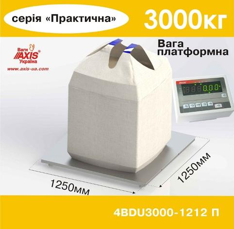 Весы платформенные складские 4BDU3000-1212-П, фото 2