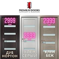 Двері міжкімнатні OP-02