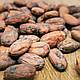 Какао боби Кріолло (Criollo F2), Венесуела 500г, фото 2